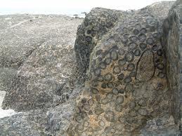 origin of granaite 2